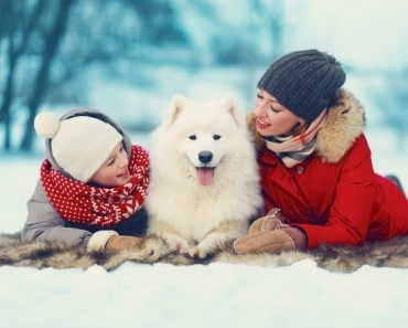 ¿Mascotas para regalar en Navidad?