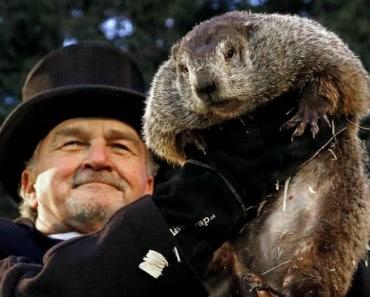 2 de Febrero, día de la Marmota: ¿Quién es la marmota Phil?