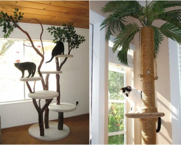 Los rascadores más originales para gatos caseros