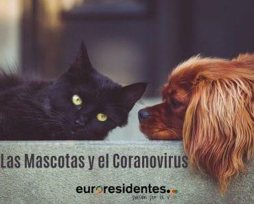 Cómo afecta el Coronavirus a nuestras mascotas