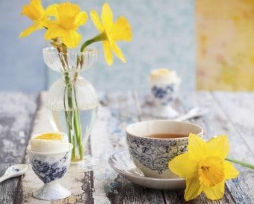 Cómo darle un aire nuevo a tu hogar en primavera