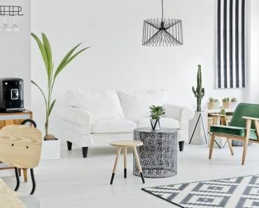Decorar con plantas, la mejor forma de darle un soplo de aire fresco a tu hogar