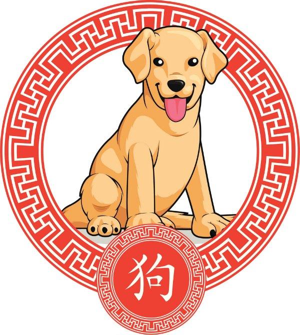 Resultado de imagen para caracteristicas del año de perro de tierra