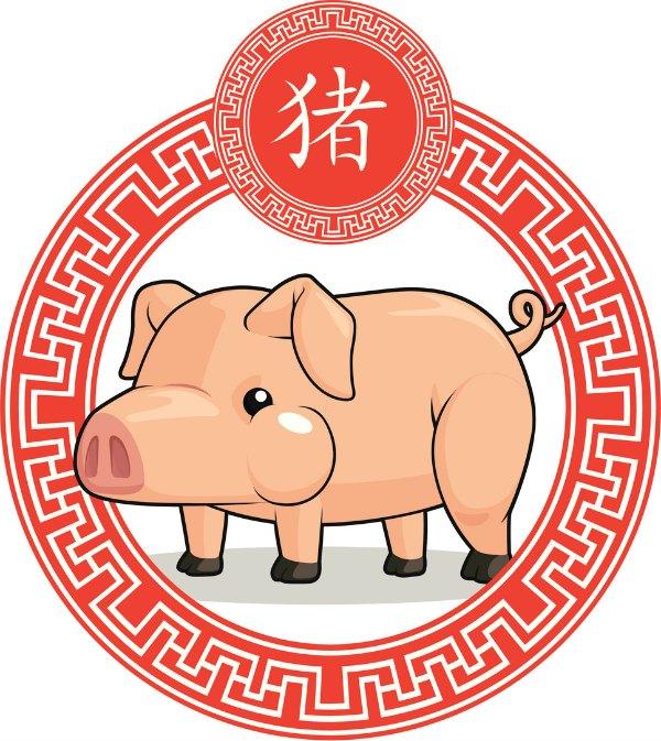 Cerdo O Jabalí Horóscopo Chino