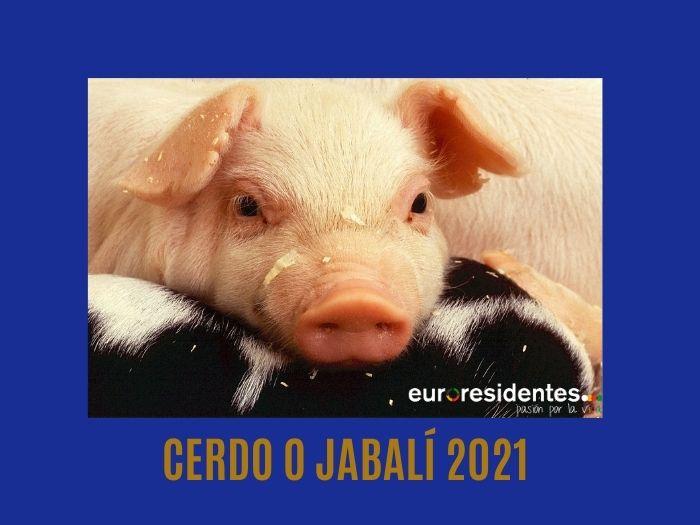 Cerdo o Jabalí 2021 Horóscopo Chino