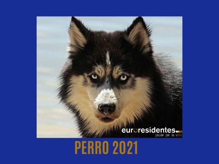 Perro 2021 Horóscopo Chino