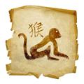 Características de los animales en el horóscopo chino