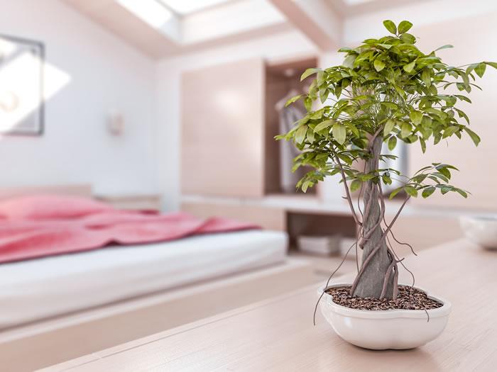 feng shui en el dormitorio