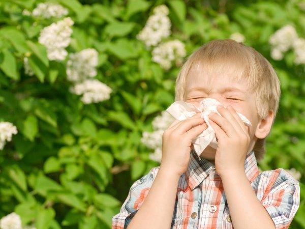 Consejos para la alergia al polen