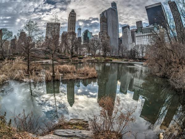 Conoce Nueva York en invierno: Los 10 hoteles con mejor calidad/precio