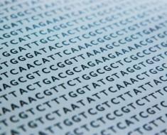 genes-asociados-al-cancer-de-prostata