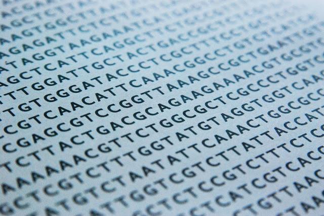 Cuádruple hélice del ADN