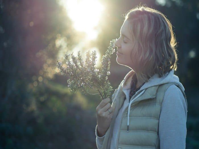 El olor a romero mejora la memoria