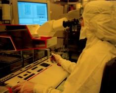 clonación-células-madre1