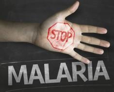 malaria-euroresidentes