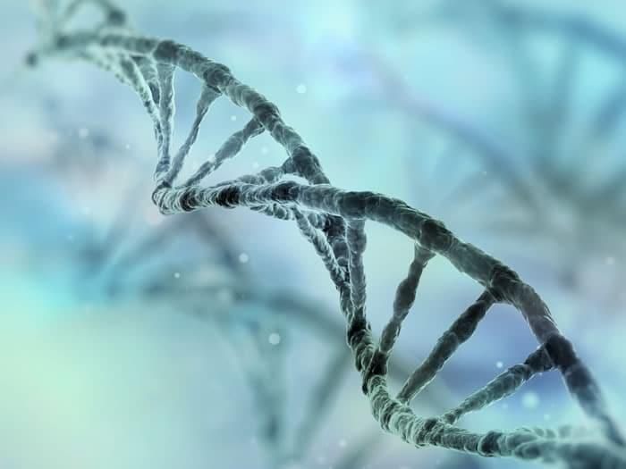Influencia de los genes en el éxito