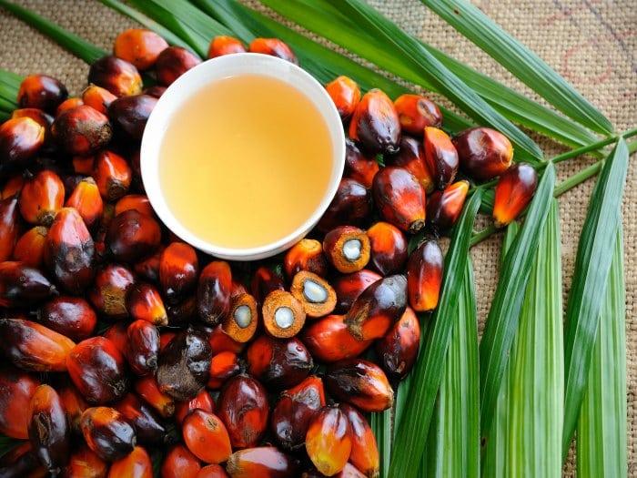 Aceite de palma: ¿Es perjudicial para la salud?