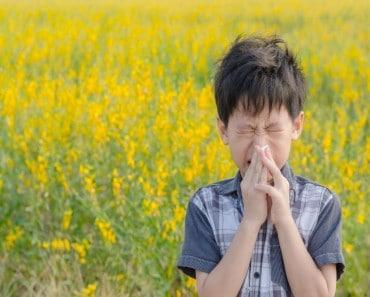 Cómo evitar la alergia primaveral