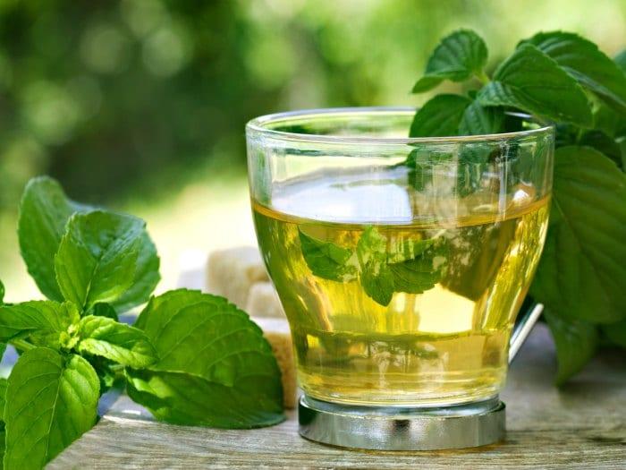 Té verde para el envejecimiento