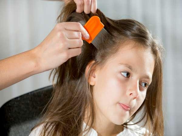 Pediculosis c mo podemos eliminar los piojos salud y for Salon de coiffure anti poux