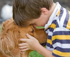 pon-una-mascota-en-la-vida-de-tu-hijo-ganara-en-salud