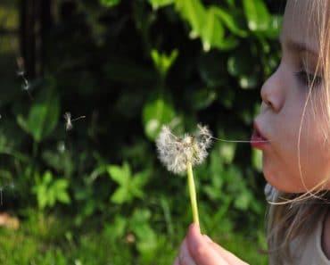 ¿Sabes que es la rinitis alérgica en niños?
