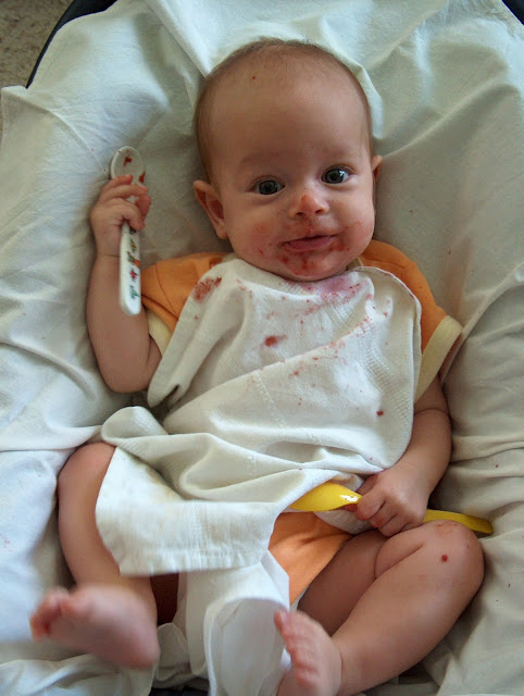 Alimentación infantil complementari