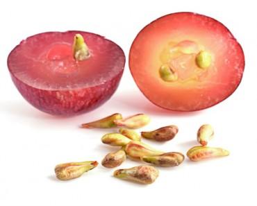 Semillas de uva: ¿Tratamiento para el cáncer colorrectal?