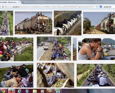 busqued-.imagenes-google-tren-la-bestia