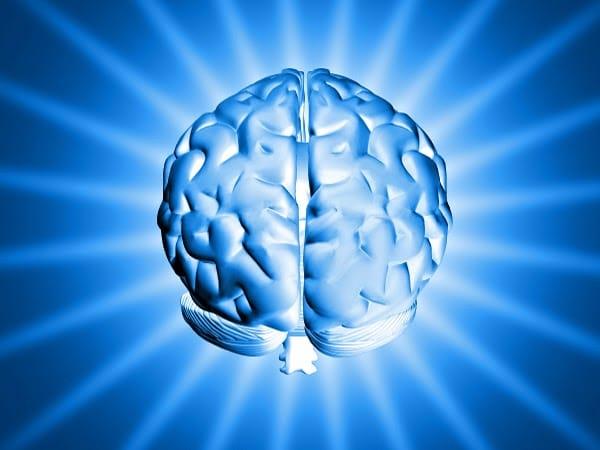 ¿Tienes algún mal recuerdo? Gracias a este interruptor genético, podrás eliminarlo de tu memoria