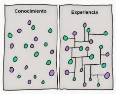 conocimiento-y-experiencia