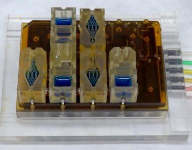 Evatar, un aparato de reproducción femenino artificial