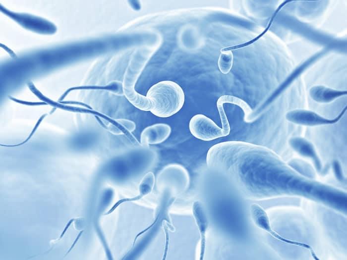 infertilidad nanoparticulas