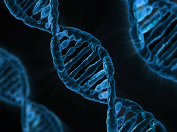 Secuenciación de un genoma completo con nanotecnología