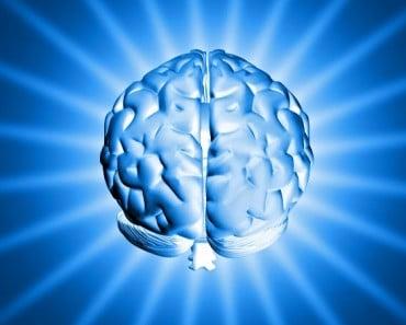 Descubren cómo borrar los recuerdos desagradables con un interruptor genético