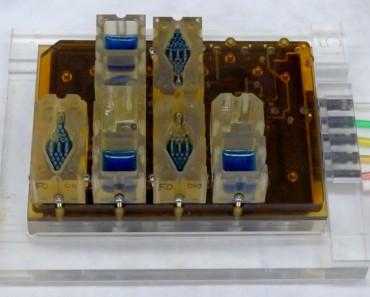 Evatar, un aparato de reproducción femenino artificial capaz de reproducir el ciclo menstrual