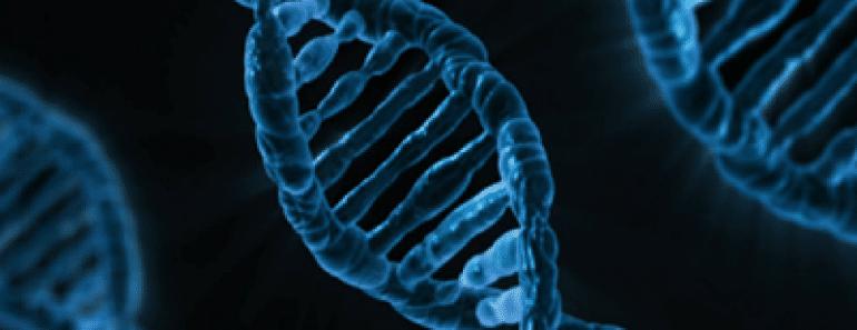 Google desea almacenar tu genoma en la nube (Google Genomics)