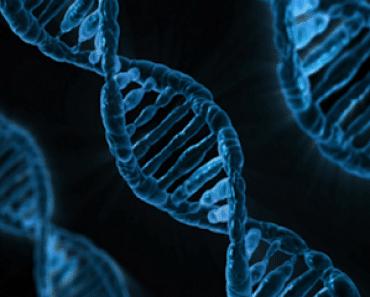Ensamblan el primer genoma completo de un organismo vivo utilizando un dispositivo del tamaño de un teléfono móvil