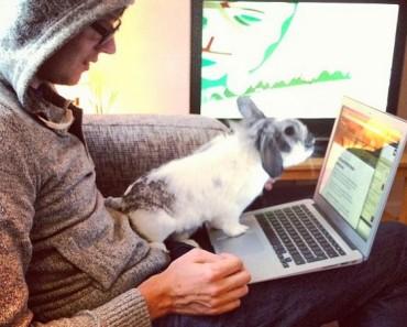 Las mejores webs para aprender a programar