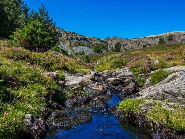 Parques naturales de Soria