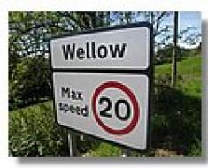 tnwellow-16
