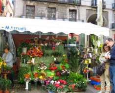 Rambla-de-les-Flors-00