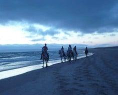 ruta-a-caballo-cadiz-21