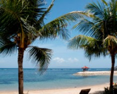 Cocos nut trees and a chair on a beach