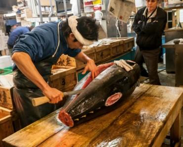 mercado-pescado-tokio-tzukiji