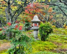 Kenrokuen-jardin