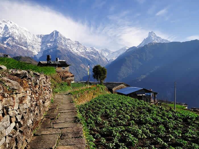 Vista a las montañas desde los annapurnas Ghnadruk Village Nepal