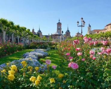 Alcalá de Henares: entre más de 100 posibilidades. 9 extraordinarias propuestas