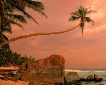 13 Cosas que descubrí en Sri Lanka y que te ayudarán si vas a viajar allí