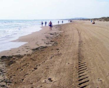 Playas de Elche: normativa para la desescalada y medidas de seguridad